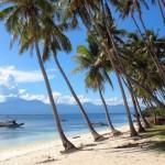 """Arkadia na Filipinach w """"Fenomenie""""!"""